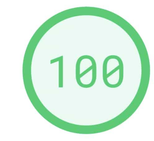 グーグルスピード100点